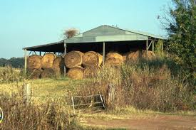 INSIDE HAY STORAGE WOULD PAY FOR EAST TEXAS PRODUCERS | AgriLife ... 3 Barns Lessons Tes Teach Hay Barn Interior Stock Photo Getty Images Long Valley Heritage Restorations When Where The Great Wedding Free Hay Building Barn Shed Hut Scale Agriculture Hauling Lazy B Farm With Photos Alamy For A Night Jem And Spider Camp Out In That Belonged To Richardsons Benjamin Nutter Architects Llc Filesalt Run Road With Hoodjpg Wikimedia Commons Press Caseys Outdoor Solutions Florist Cookelynn Project Dry Levee Salvage