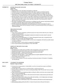 Download Treasury Manager Resume Sample As Image File