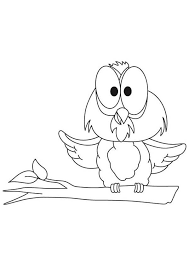 Funny Big Eye Owl Coloring Page