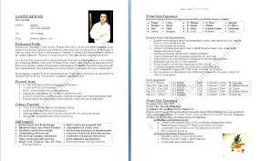 Professional Cook Resume Chef Summary Culinary Samples With Objective And Example