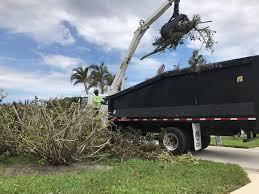 Christmas Tree Lane Ceres Ca Address by Hurricane Irma Trash Debris Pick Up Information Where Orlando