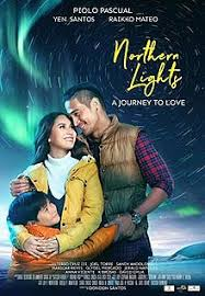 Northern Lights A Journey to Love