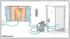 luftbefeuchter gegen husten und erkältung info tipps