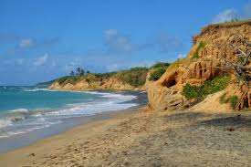 100 Vieques Puerto Rico W Hotel Hat To See And Do In