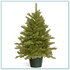 Harrows Artificial Christmas Trees by Artificial Christmas Trees