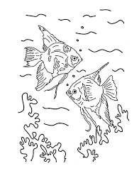 Incredible Angel Fish Coloring Page