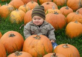 Conners Pumpkin Patch Jacksonville Fl by Fun 4 Us Kids Local Family Fun Is Just A Click Away