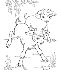 Farm Animal Coloring Page Free Printable Baby Goats Pages Featuring Hundreds Of Animals Sheets