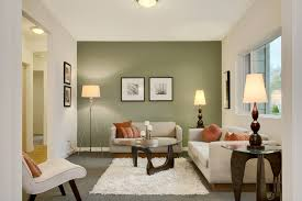 green accent wall with cushions living room transitional and