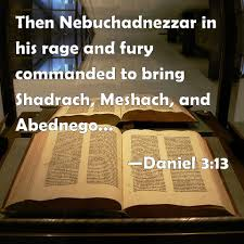 100 Daniel 13 3 Then Nebuchadnezzar In His Rage And Fury