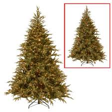 National Tree Company 6 Ft Frasier Grande Artificial Christmas With Dual Color LED Lights
