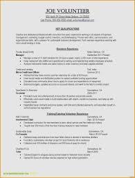 100 Smart Resume Builder 20 Free And Download Brucereacom