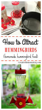 Best 25+ Hummingbird Feeder Homemade Ideas On Pinterest | Humming ... 84 Best Gardens And Birds Images On Pinterest Maps Backyard Archives New England Today The Finch Farm 10 Photos Bird Shops Vancouver Wa Phone At Chickadee Pamplin Media Group Home Mason Bees Maintenance Harvesting Cleaning Mainers Invited To Take Part In Global Great Count 88 Its For Birds Birdseye View Of Portland 1879 Oregon