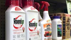 California Gets Closer To Requiring Cancer Warning Label On Roundup Weed Killer