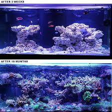 large aquarium rocks for sale reef saver live rock aquacave