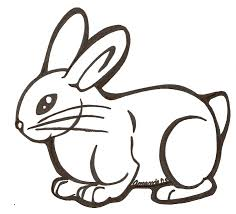 Full Size of Drawing how To Draw A Cute Bunny Holding A Heart To her With