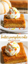 Pumpkin Cake Paula Deen by Best 25 Pumpkin Gooey Butter Cake Ideas On Pinterest Pumpkin