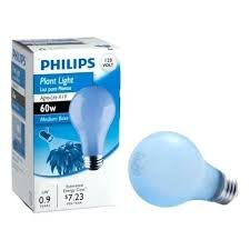 sunlight light bulbs watt incandescent light bulb at the home