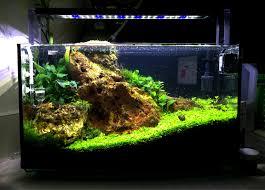 The Planted Tank Forum View Single Post Petco arc 6 25