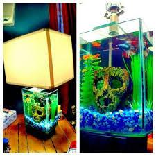 59 best aquariums fish tanks images on aquarium fish