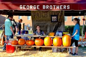 Piedmont Service Center Pumpkin Patch by Greensboro Daily Photo Decorating