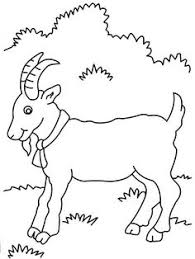 Free Cute Goat Coloring Pages Procoloring
