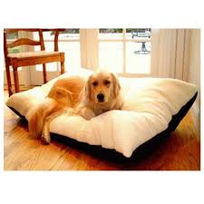 amazon com 42x60 red rectangle pet dog bed by majestic pet