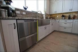 Ikea Domsjo Double Sink Cabinet by Kitchen Rooms Ideas Awesome Ikea Domsjo Single Bowl Sink Drop In