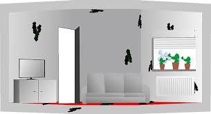 schimmel im wohnzimmer effektiv und schnell entfernen