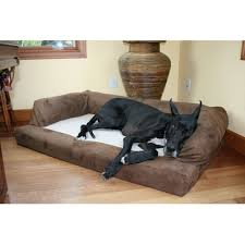 Top Rated Orthopedic Dog Beds by The 5 Best Memory Foam Dog Beds Dog Bed Reviews