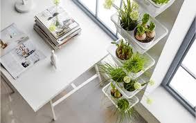 pflanzen in der wohnung gestaltungsideen ikea deutschland
