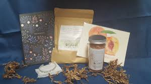 Our Southern Hearts January 2017 Subscription Box Review + ...