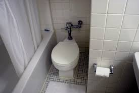 Kill Springtails In Bathroom by How To Kill Silverfish In Pipes U0026 Drains Hunker