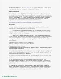 Professional Resume Writers Nyc Examples Professional Resume ...