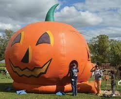 Pumpkin Farm In Palos Hills by Great Pumpkins U0027 Grow At Local Fall Farms News Harborcountry
