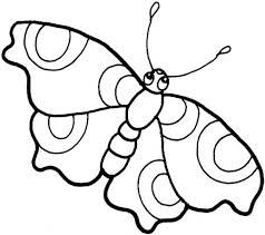 Free Printable Cute Little Butterfly Coloring Page