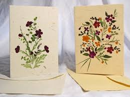 45 best Dried flowers ideas images on Pinterest