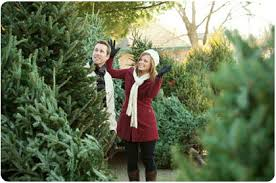 Aspirin Keep Christmas Trees Alive by Ways To Keep Your Tree Alive During The Holidays The Krazy