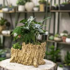 Resin Artificial Twisted Driftwood Flower Pot Sculpture Succulent Planter Rustic 2 Pots Layers Trunk Stump