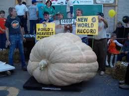 Worlds Heaviest Pumpkin Pie by Weirdest World Records 28 Photos Guinness Guinness Book And
