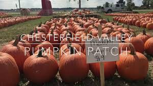 Pumpkin Patches Maryland Heights Mo by Chesterfield Valley Pumpkin Patch Youtube