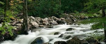 The Sinks Smoky Mountains by The Best Swimming Holes In Gatlinburg And The Great Smoky