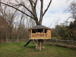 Backyard Treehouse For Kids Decorations : Simple Backyard ... 10 Fun Playgrounds And Treehouses For Your Backyard Munamommy Best 25 Treehouse Kids Ideas On Pinterest Plans Simple Tree House How To Build A Magician Builds Epic In Youtube Two Story Fort Stauffer Woodworking For Kids Ideas Tree House Diy With Zip Line Hammock Habitat Photo 9 Of In Surreal Houses That Will Make Lovely Design Awesome 3d Model Free Deluxe