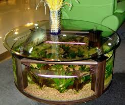 Coffee Table : Coffee Table Aquarium For Sale Roy Home Design ... Home Designs Built In Aquarium 4 Homes With Design Focused On Living Room Modern Style For L Tremendous Then Fish Tank Decorations Interior Stunning Ideas Images Best Idea Home Design Cuisine Amazing Decor Gallery Wonderful Bedroom 20 For House Goadesigncom Aquariums Refresh With Different Tropical Vibe Kitchen Decoration Cool The Divine Renovation 35 Youtube Rousing Channel Designsfor Tv Desing Bar Stools Counter Pictures On Wall