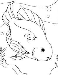Fish Template Preschool Eliolera
