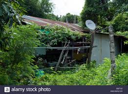 Shack In Bangkok Thailand With Satellite Dish On Roof Stock Photo ... Commercial Sallite Dish Cleaning Extreme Clean Of Georgia Looking To Recycle Your Tv Read This First Backyard Shack And Sallite Dish Calvert Texas Photo Page Me My Husband Painted An Old Dishand Turned It Handy Mandys Project Emporium Patio Umbrella A Landed In Back Yard Youtube Recycled A Left Over Watering Can From Shack Bangkok Thailand With On Roof Stock Photo Large Photos Mounted Wooden Boardwalk Bamfield Vancouver Repurposed 8ft Backyard Chickens
