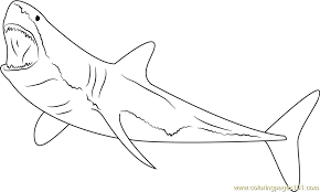 Great White Shark Diving Coloring Page