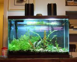 faqs on lighting fixtures ls for the planted tanks