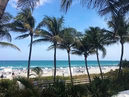 Publix Christmas Trees Miami by Apartment Beautiful Studio Miami Beach Fl Booking Com