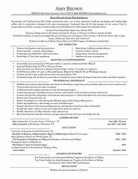 Sample Resume Corporate Travel Manager Agency Job